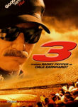3: The Dale Earnhardt Story (2004)