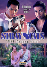 Rent Stray Cats on DVD