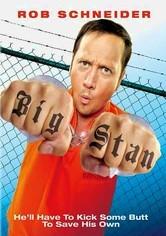 Rent Big Stan on DVD