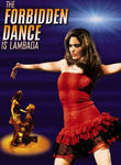 Lambada: The Forbidden Dance poster