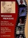 Strange Ecstasy of Woodcarver Steiner poster